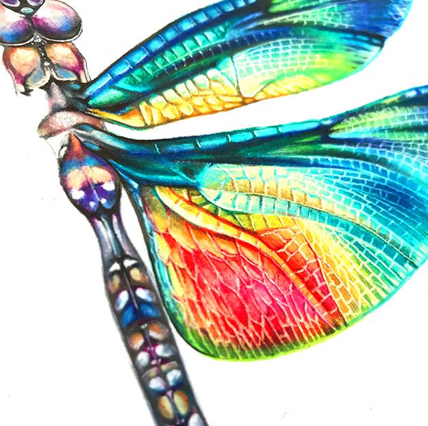portfolio_textile_design_libelula