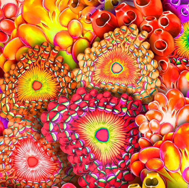 textile_design_wg_bc_5