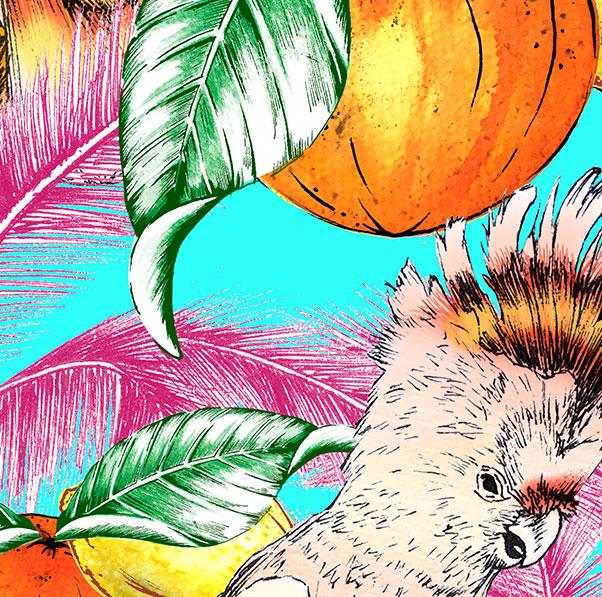 molamola_concept_two_tropical_vibes1