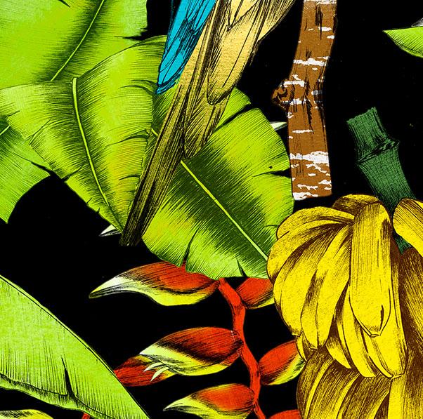 molamola_concept_two_tropical_vibes2