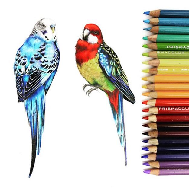 portfolio_textile_design_pericos